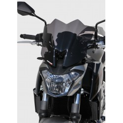 Sport Screen 29cm Z 650 2017