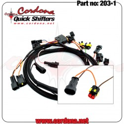 Cordona Wiring Harness RSV4R