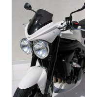 Speed Triple 1050 2008-2010