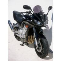 FZS 1000 2001-2005