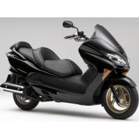 Forza 250 2008-2011