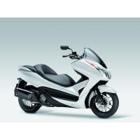 Forza 300 2013-2017