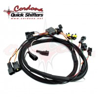 Wiring Harness Quickshifter