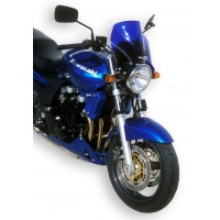 ZRX 1200 2001-2006
